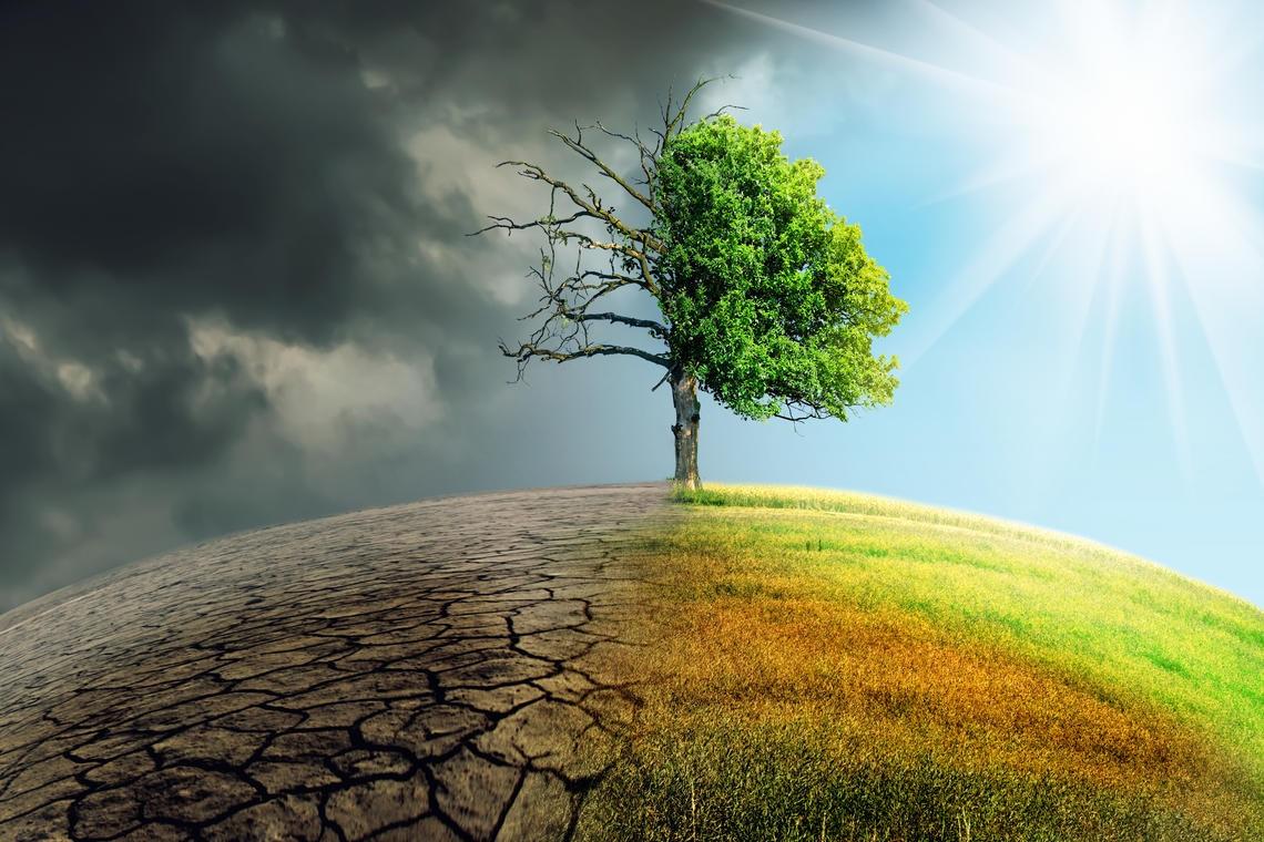 Klimaschutz ist Selbstschutz / Drittschutz